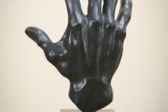 Hand van de meester